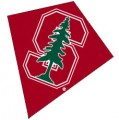 Stanford University Diamond Kite