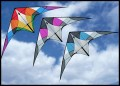 The Acrobatx Kite comes in your choice of: Rainbow, Purple, or Blue