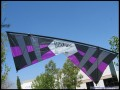 Revolution B-Series (Mid Vent) Quad Line Kite, Purple/Black