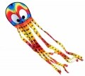 Octopus, Squeaky the Wavy Rainbow Octopus
