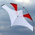 Emong Gliding Kite, Flying Wings